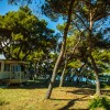 Arena Stoja Mobile Homes